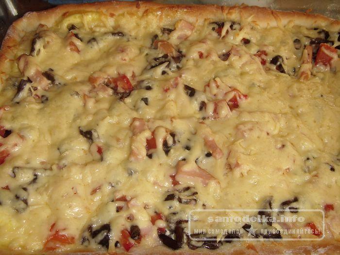 кусочек готовой пиццы