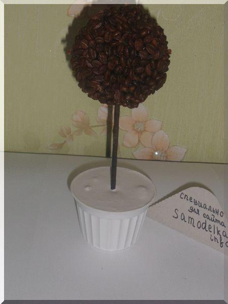Застывший гипс с заготовкой топиария из кофе