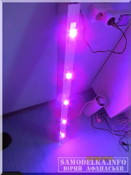 включенный светильник для растений