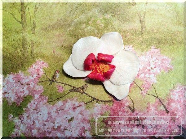 Орхидея из полимерной глины своими руками